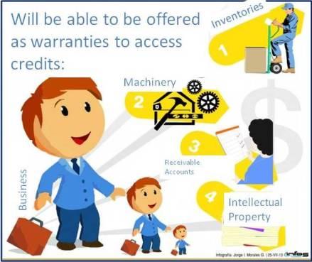 Ley de Garantias